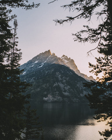 JENNY LAKE IN THE GRAND TETONS