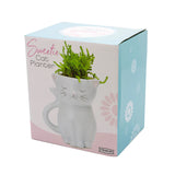 Sweetie Cat Planter