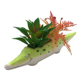 Crocodile Planter