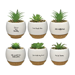 Mini Quoted Succulent Pots