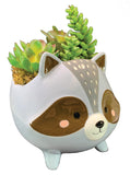 Raccoon Planter
