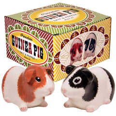 Guinea Pig Salt & Pepper Set