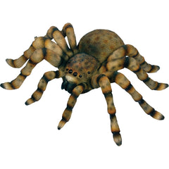 Tarantula Wall Plaque