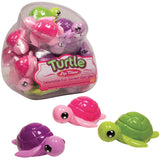 Turtle Lip Gloss