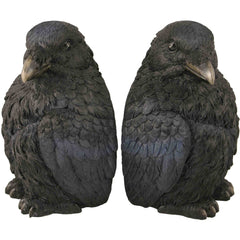 Corvus Bookend Set