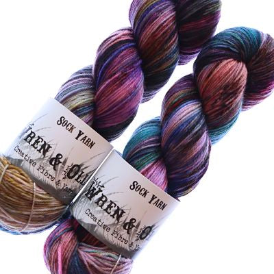Wren and Ollie Sock Yarn 100gm - Archimedes