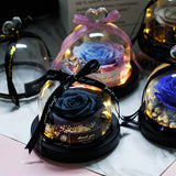 Eternal Rose in Glass LED