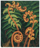 Lens Cloth - Springing fern