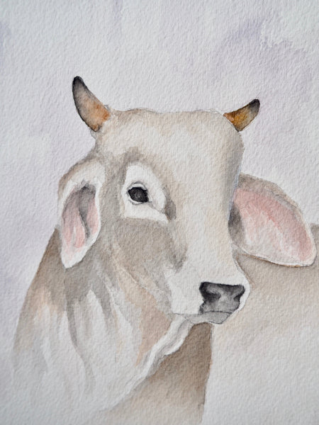Young Cow Painting