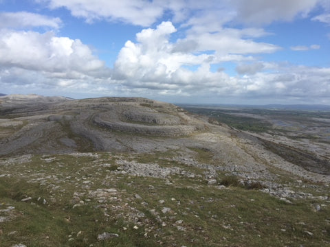 Burren National Park, with glacial-era limestone, Ireland.