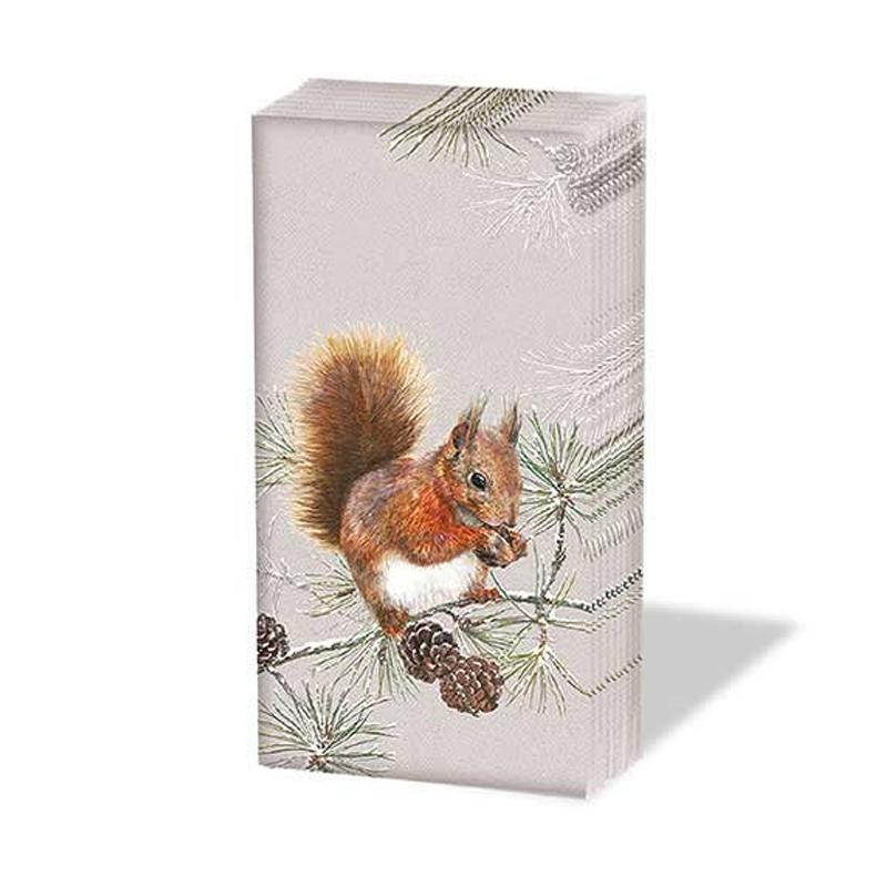 Squirrel in Winter Paper Pocket Tissues