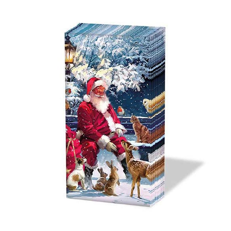 Santa and Friends Paper Pocket Tissues