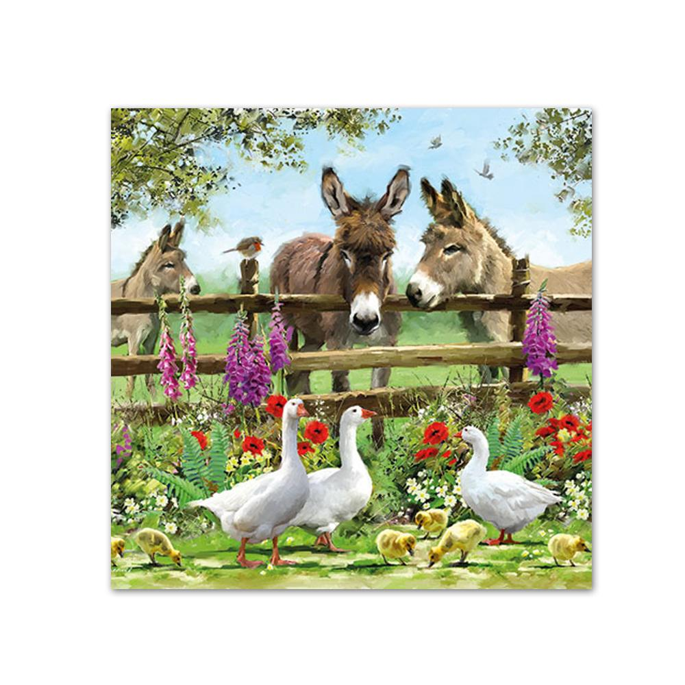 Summertime Donkeys Beverage Napkins