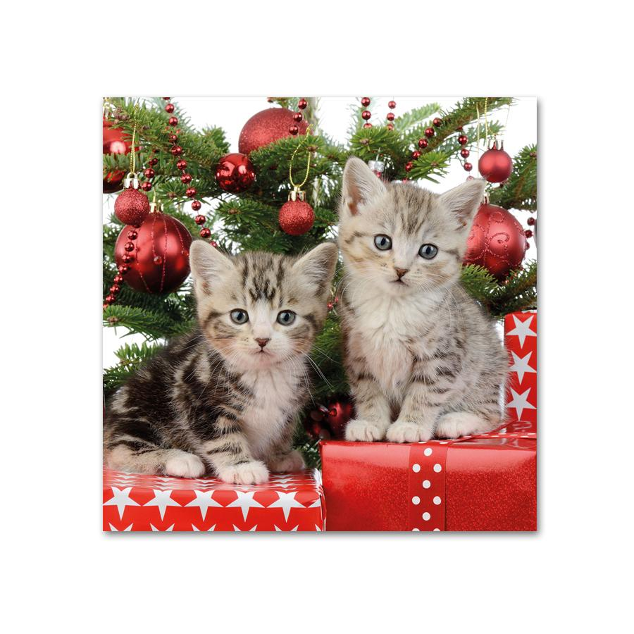 Chritmas Day Kittens Paper Beverage Napkins