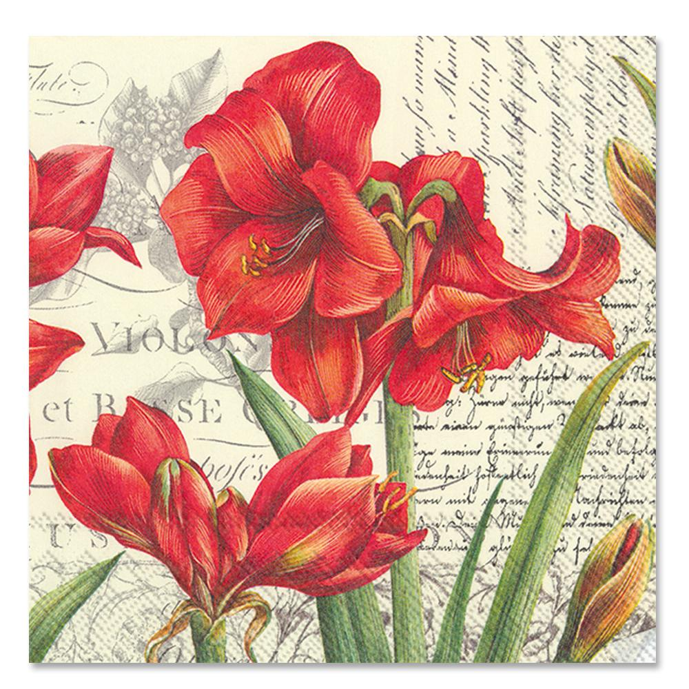 La Beaute Rouge Poinsettia Paper Luncheon Napkins