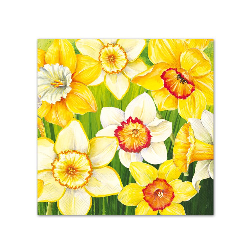 Daffodils Field Paper Beverage Napkins