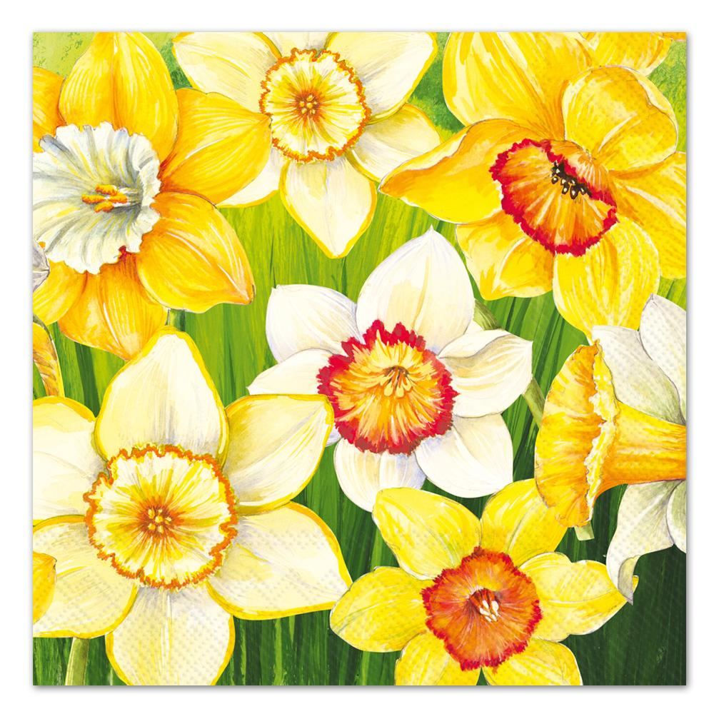 Daffodils Field Paper Luncheon Napkins