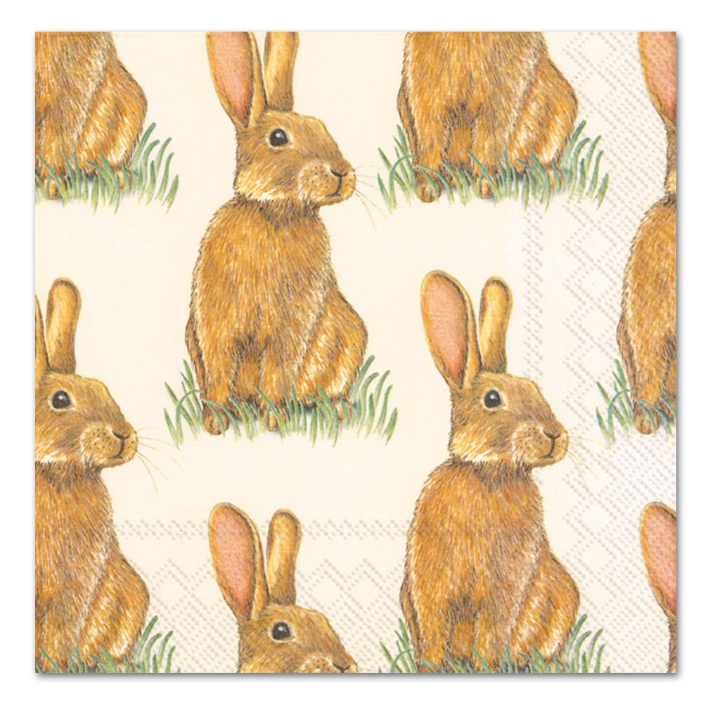 Eddie the Rabbit Paper Luncheon Napkins