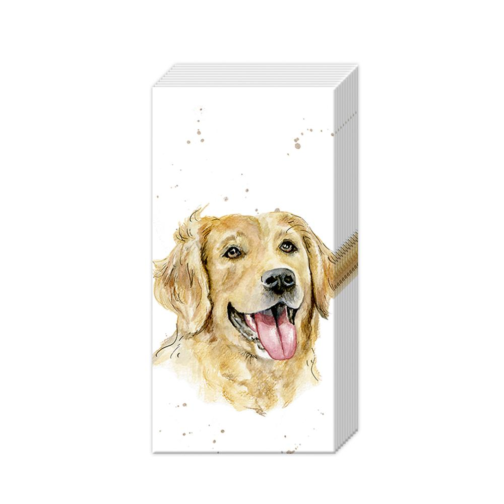 Golden Retriever Paper Pocket Tissues