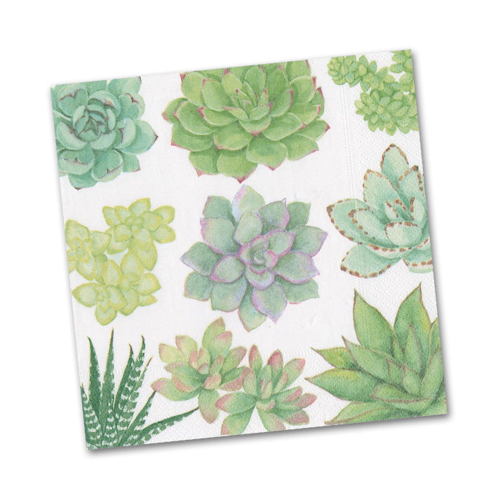 Succulents Paper Beverage Napkins