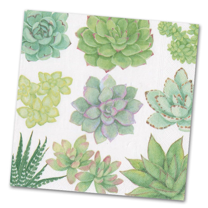 Succulents Paper Luncheon Napkins