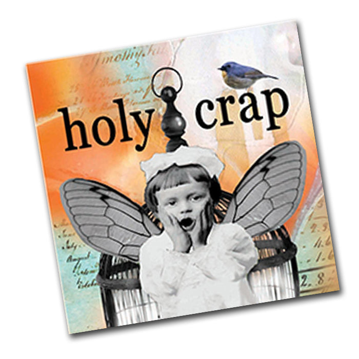 Holy Crap Funny Cocktail Napkins