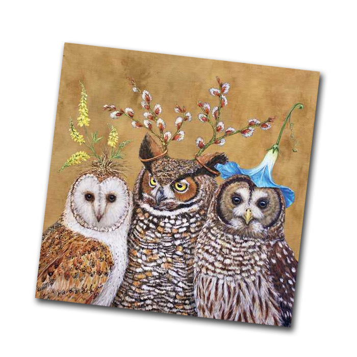Owl Family Paper Napkins - Beverage