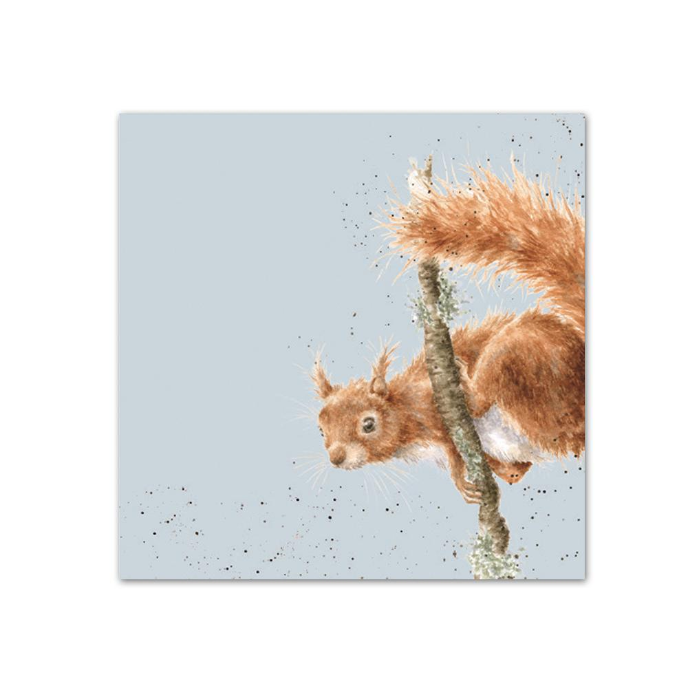 The Acrobat - Squirrel Paper Beverage Napkins
