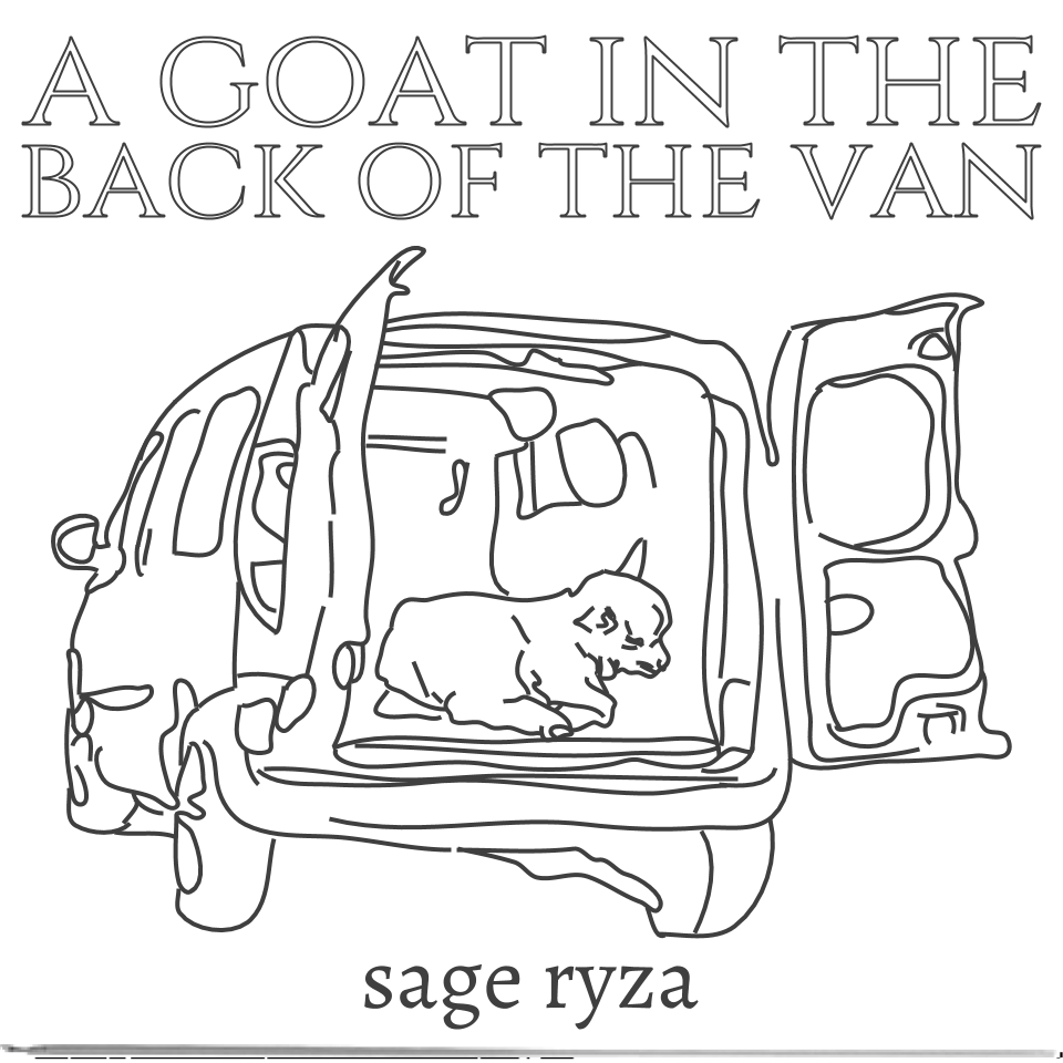 a goat in the back of the van