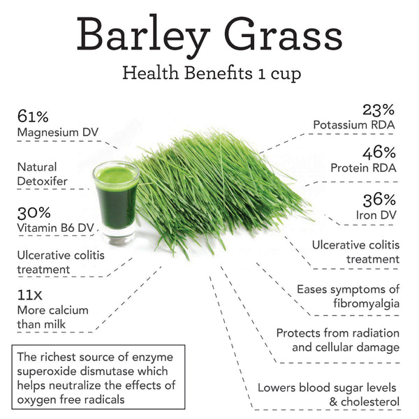 Barley grass capsules benefits