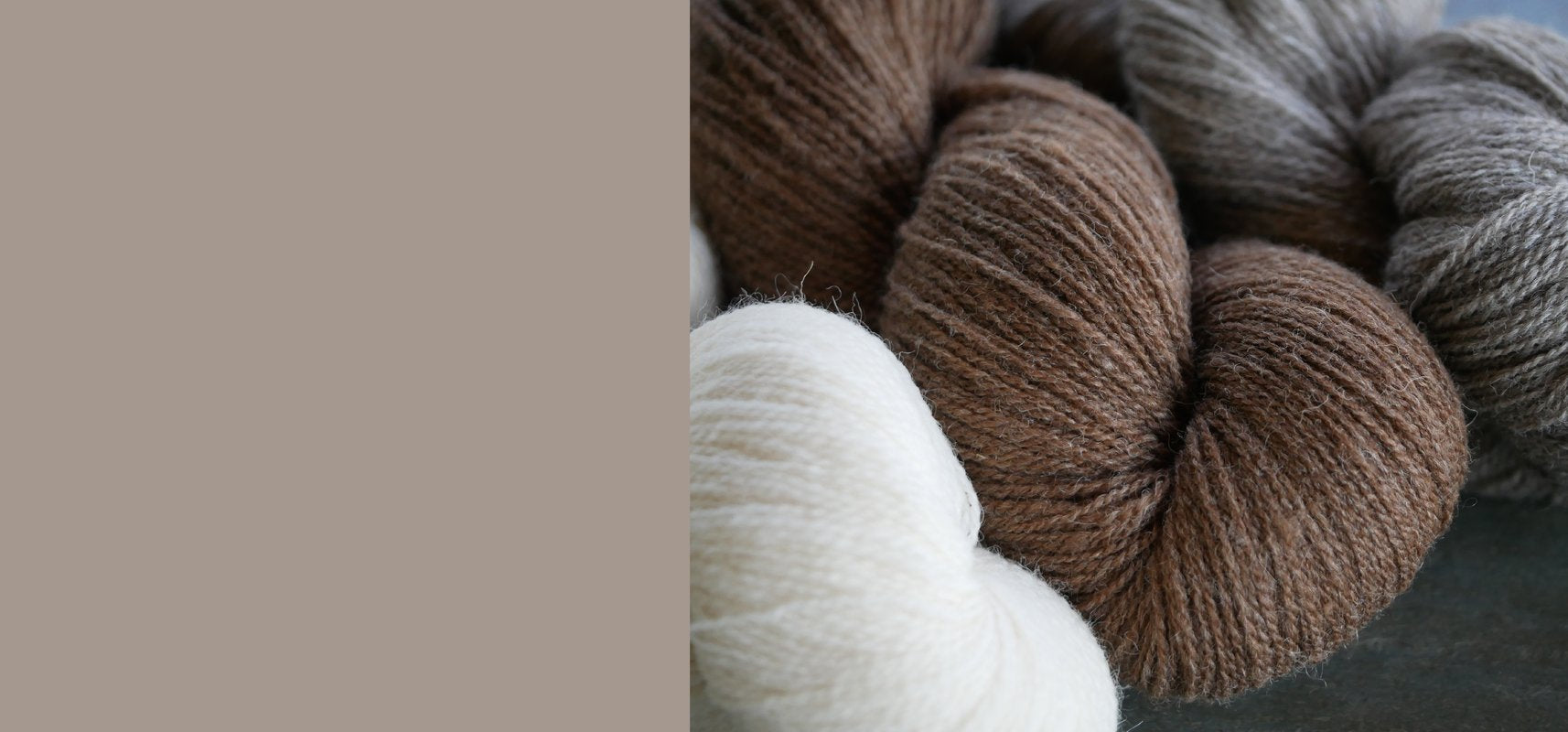 shetland fingering yarn in moorit, emsket and white