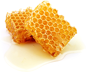 Raw Living Honey