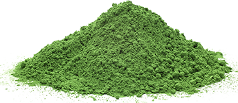 Kamut Wheat Grass Juice Powder