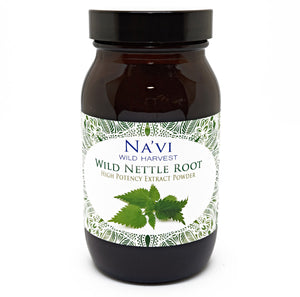 90 gram jar of wild harvested nettle root extract powder