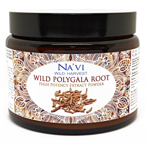 Full Spectrum Polygala Root Extract Powder - Wild Harvested