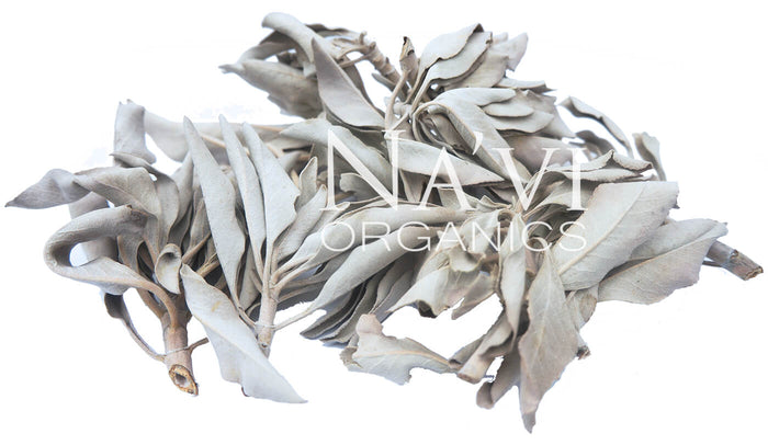 White Sage Sprigs - High Desert Sourced