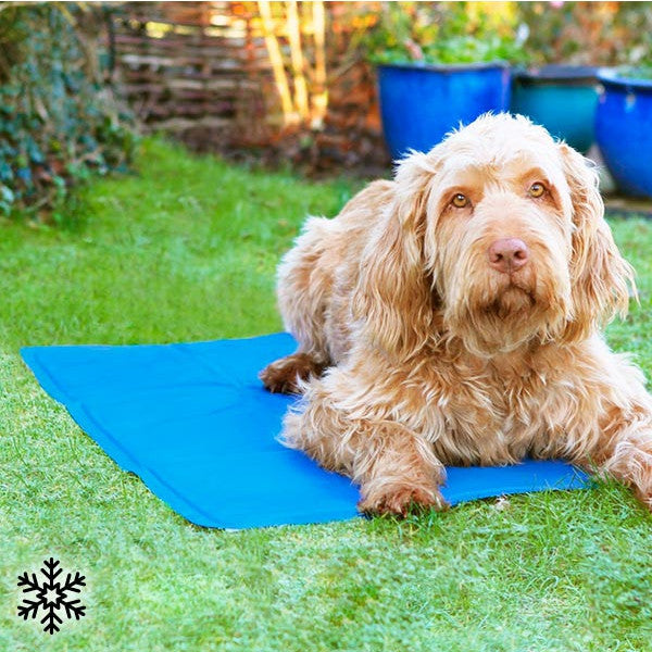 Cooling Mat for Pets-Geeks Buy Gadgets