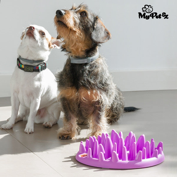 INTERACTIVE MY PET EZ SLOW FOOD BOWL-Geeks Buy Gadgets