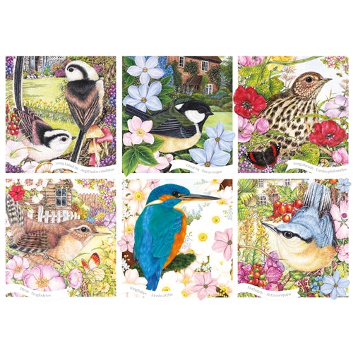 1000 piece  Jigsaw - RSPB Garden Birds