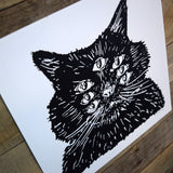 Harry Beast Screen Print