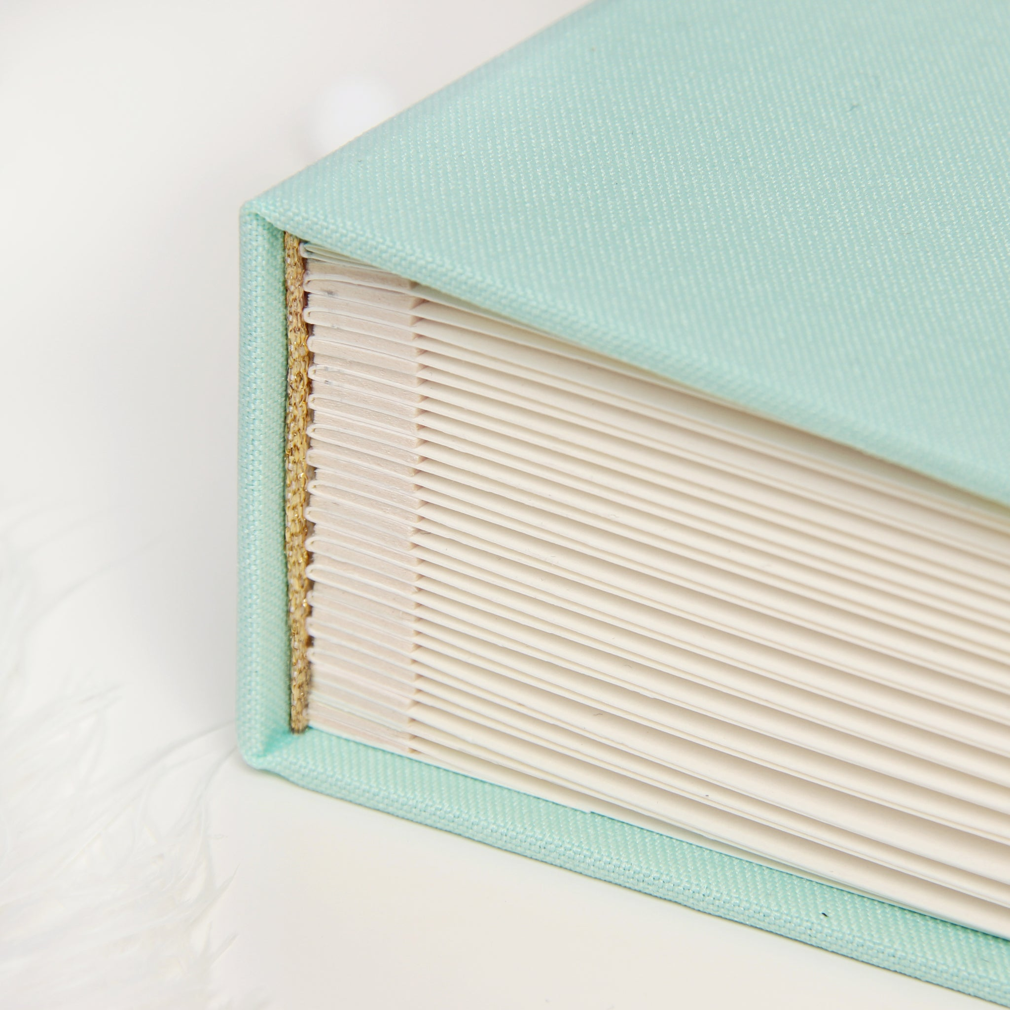 Album Little Princess , Baby album, Mint instax picture album, Swan Princess book, Kids Album - by Liumy - Liumy