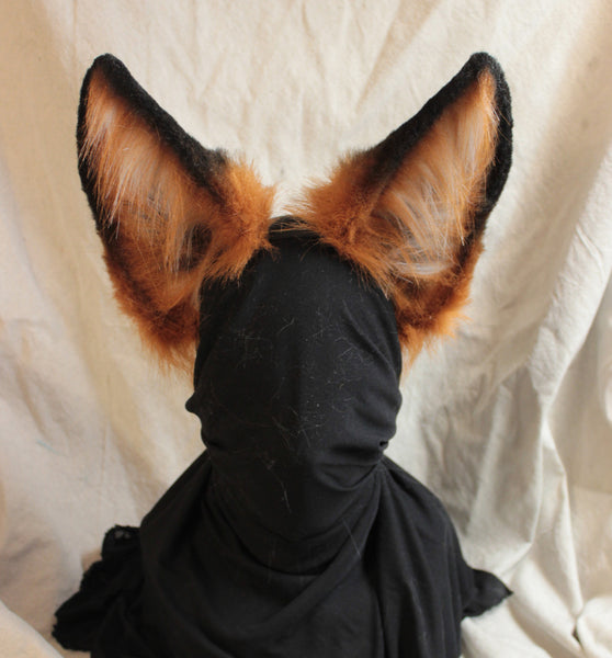 Red Fox Ears
