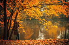 photographer taking pictures of autumn trees by a lake