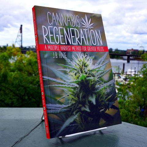 Cannabis Regeneration: A Multiple Harvest Method for Greater Yields - Saturday with Mary Jane