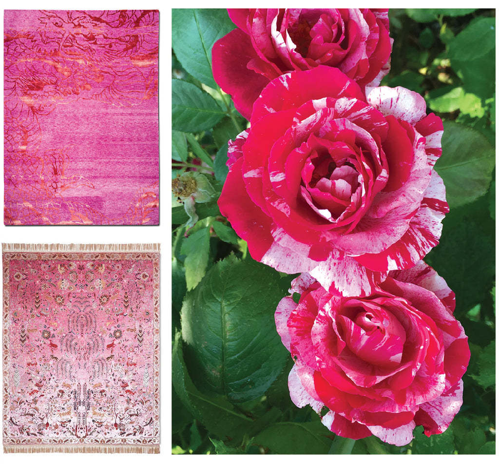 Extraordinary pink rugs and roses