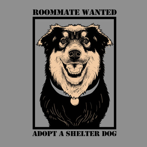 Dumb Friends League - Roommate Wanted