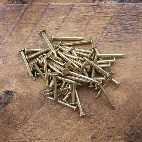 1090 pack of 50 brass escutcheon pins - ABC Ironmongery