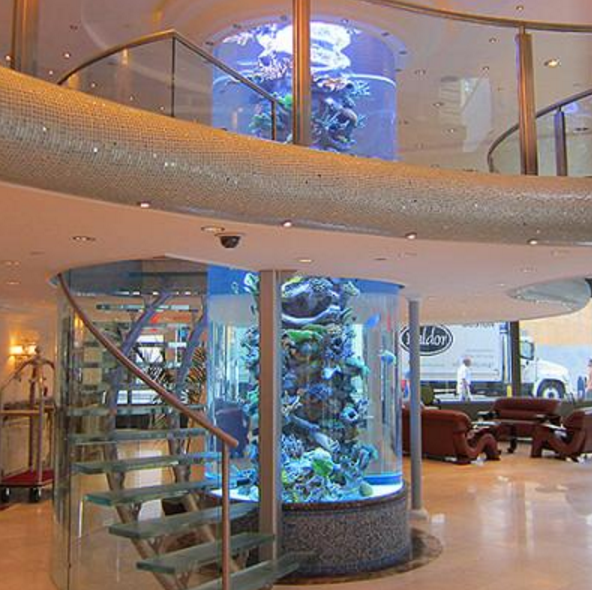 Top Trends in the Custom Aquarium World for Offices