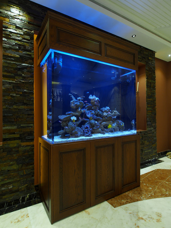 "60""L x 24""W x 48""H / 300 gallon,  Private VIP Client. Acrylic works provided by CustomAquarium.com LLC."