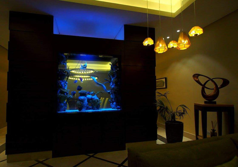 Issham Aqua aquarium <br />Acrylic works by Custom Aquarium